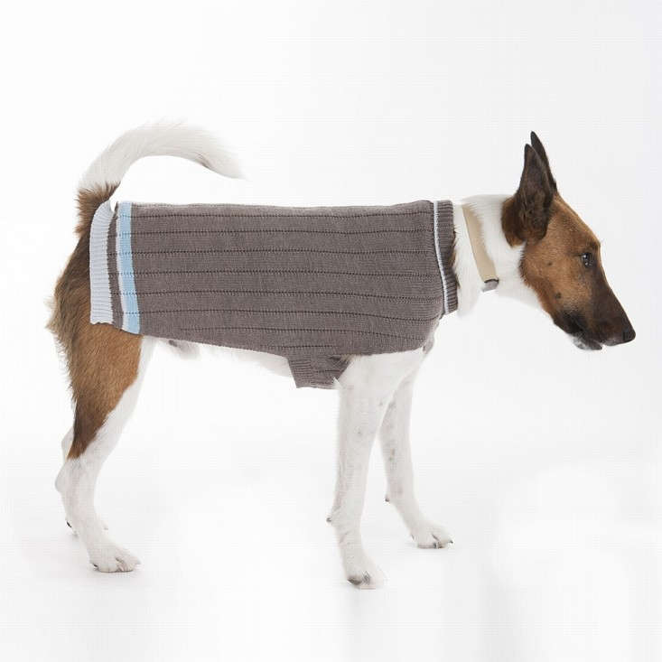 Presents From The Dog Part - 46: Gift Guide: 8 Presents For The Dog Lover