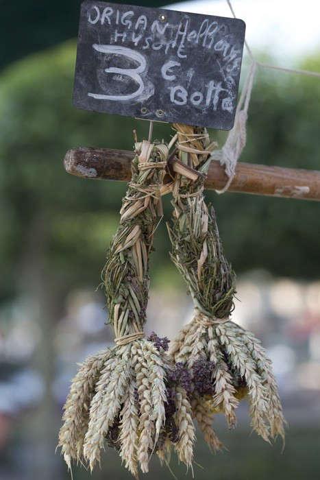Herbs Gone Wild: A French Alchemist at Market