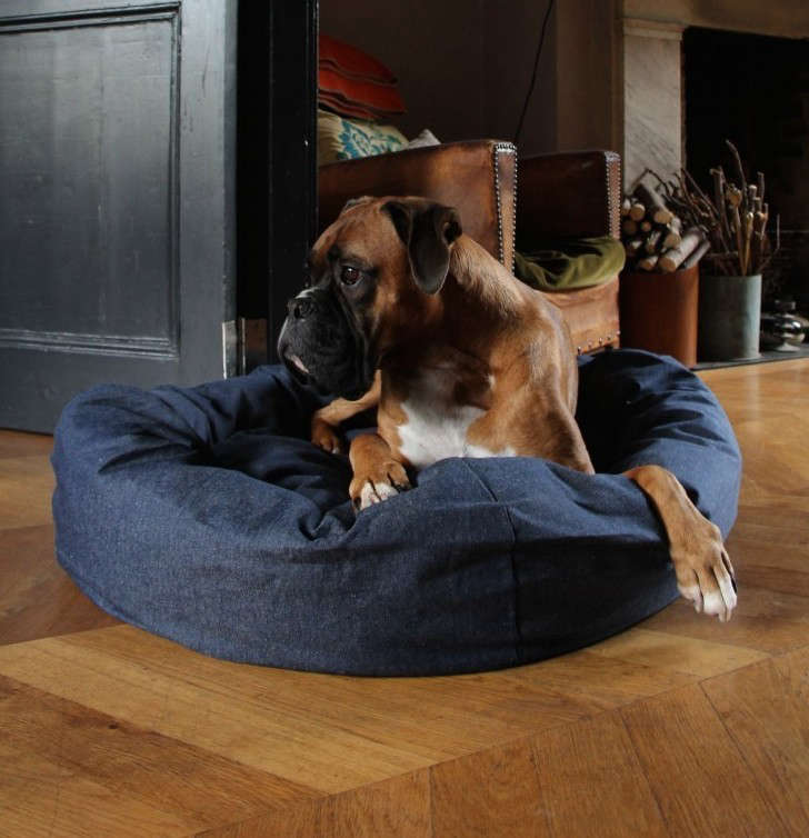 Gift Guide: 8 Presents for the Dog Lover - Remodelista