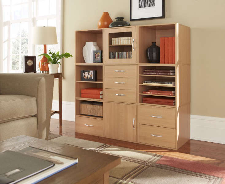 Modular Storage: Clutter-Eliminating Solutions from Go-Organize