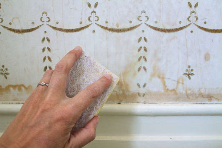Domestic Science How To Remove Water Stains From Wallpaper