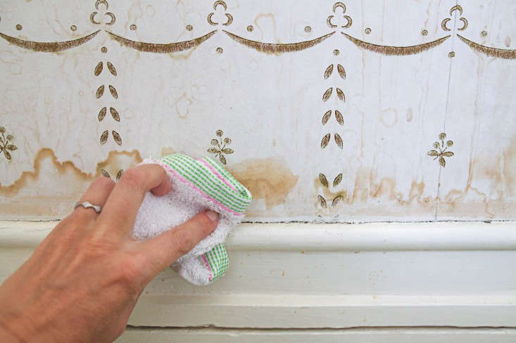 Domestic Science: How to Remove Water Stains from Wallpaper ...