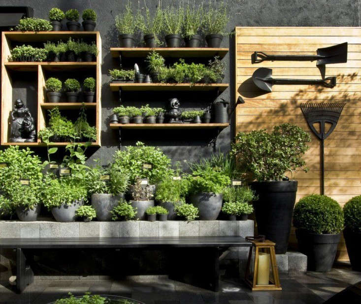 having started the year with the top 10 garden trends of 2015 michelle moves on