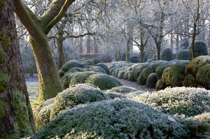 Trending on Gardenista: How to Plant a Painterly Landscape