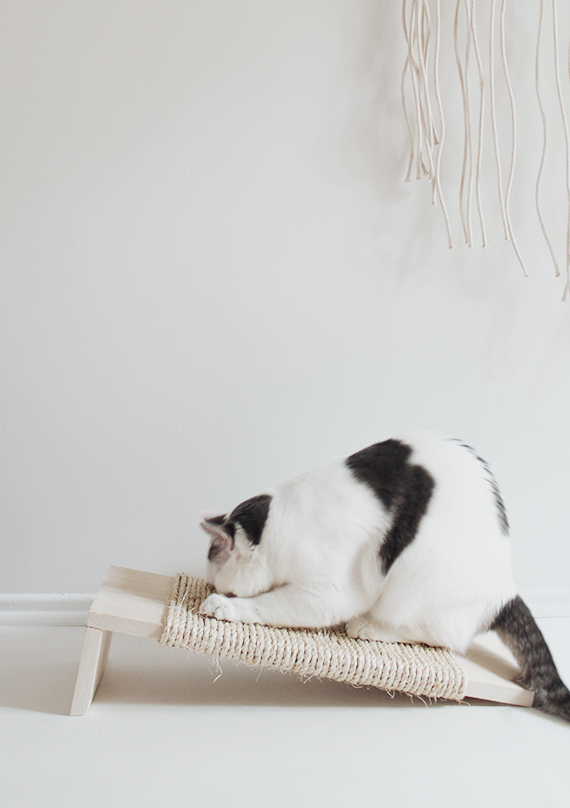 Claw Control The Diy Cat Scratching Post Remodelista
