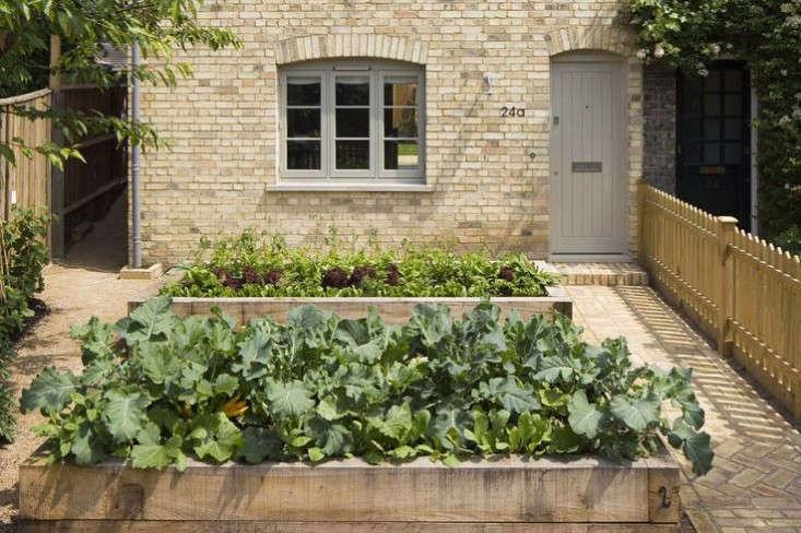 Trending on Gardenista: Small-Space Gardening, London-Style