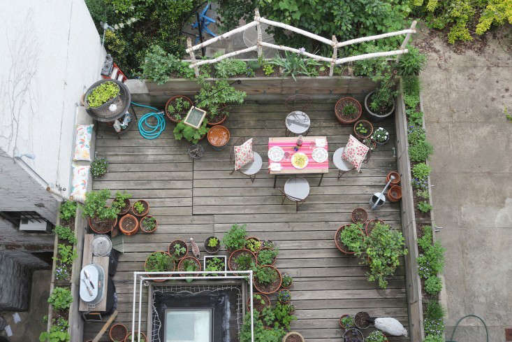 Trending On Gardenista Garden Ideas For The City Mouse Remodelista