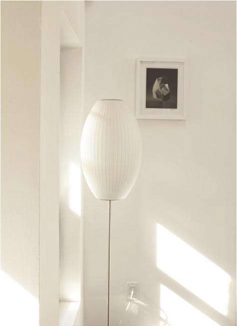 Lotus Cigar Floor Lamp