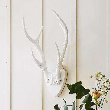 White antler