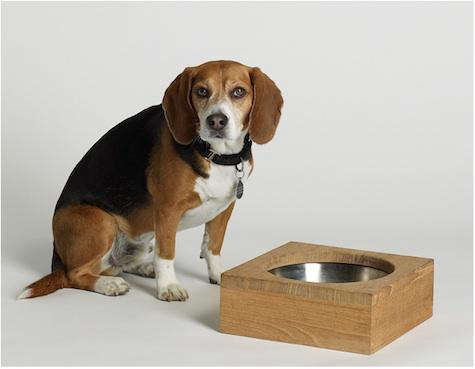james perse dog bowl