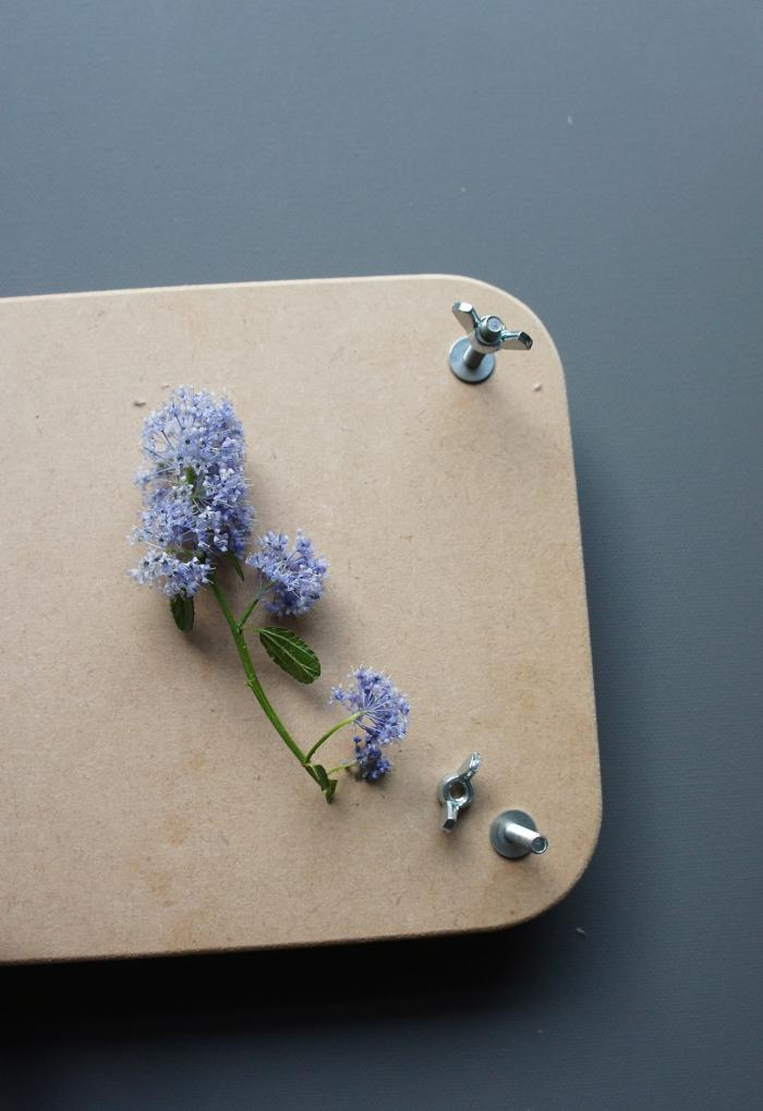 Diy how to make transcendent pressed flowers remodelista above place a sheet of cardboard down first press the flowers between layers of blotting paper or newspaper after the last layer put down another sheet mightylinksfo