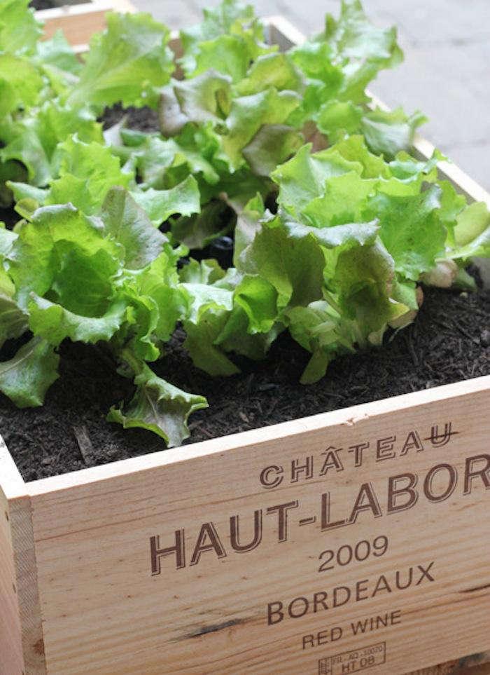 Diy Small Space Vegetable Garden Remodelista