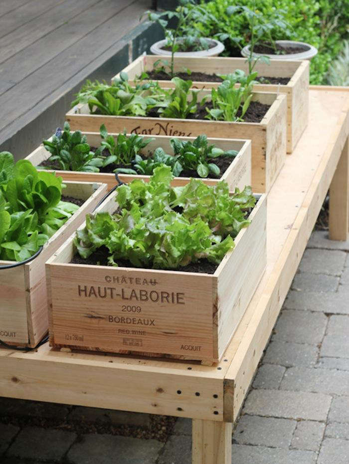 Urban Herb Garden Ideas Part - 22: DIY: Small Space Vegetable Garden