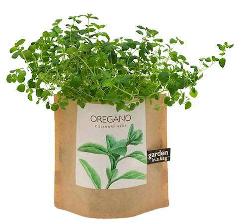 Outdoors: Garden in a Bag from Branch Home - Remodelista