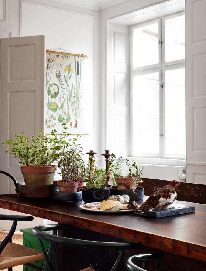 Design Sleuth: Swedish Botanicals as Decor