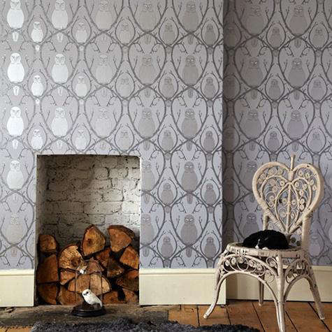 Walls Windows Amp Floors Owls Of The British Isles By