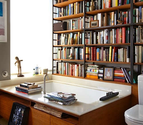 Conceal Book Shelves