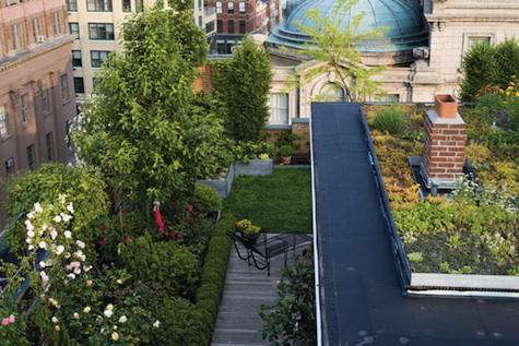 ... Are The Meadow Roof For The Crosby Street Hotel And The Eagle Street  Rooftop Farm In Greenpoint, Brooklyn. Go To Goode Green For More  Information.