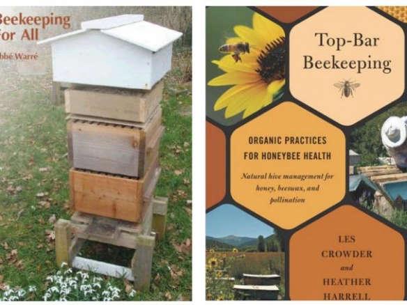 Beau Top Bar Beekeeping