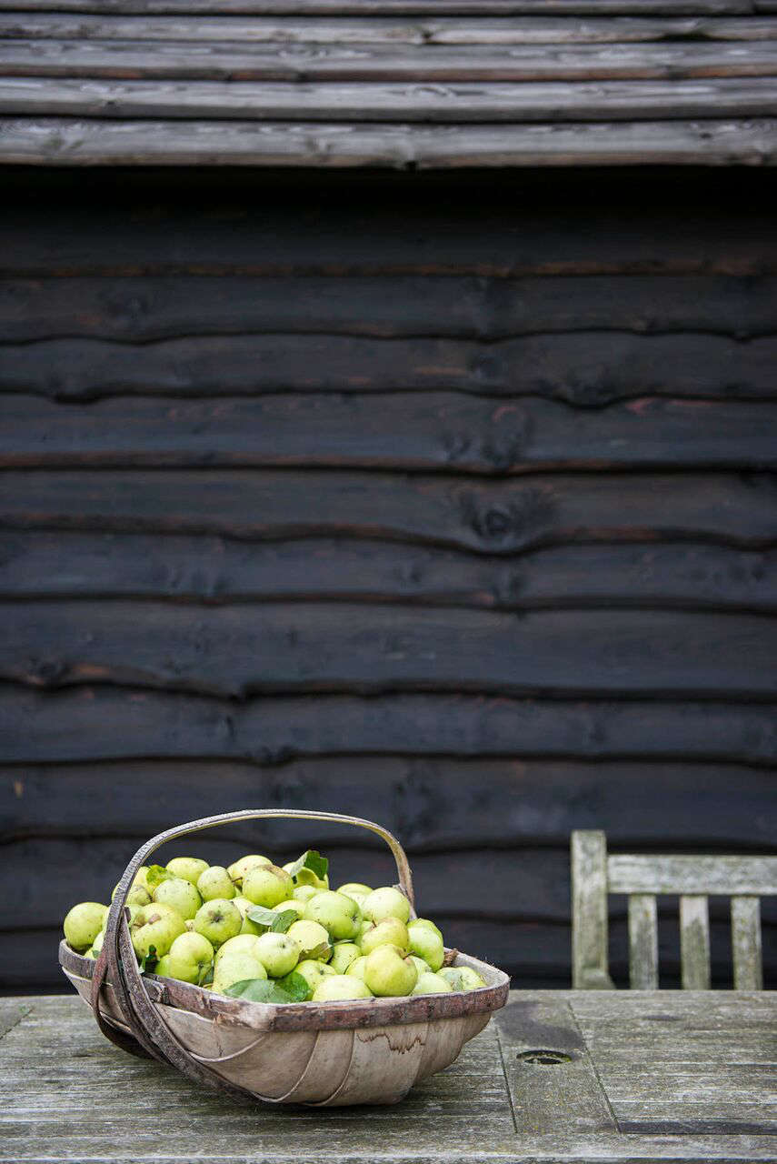 Apples in a wooden trug | Remodelista
