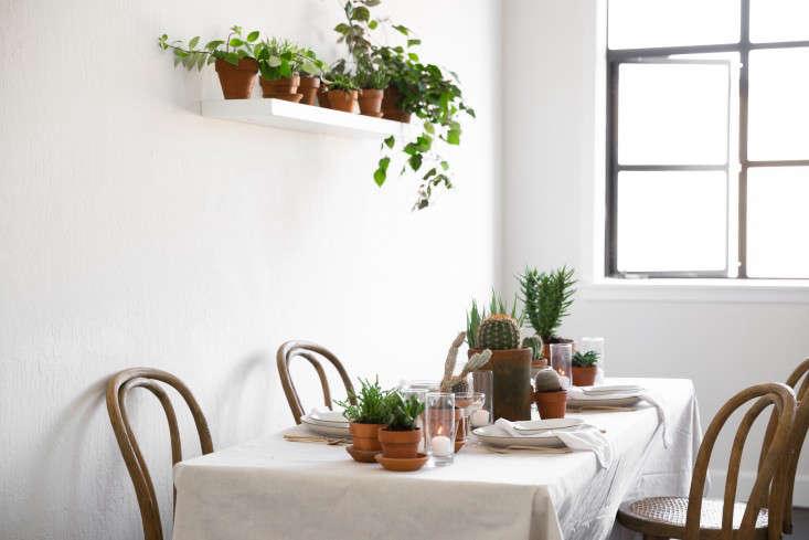 trending on gardenista quick fixes indooroutdoor
