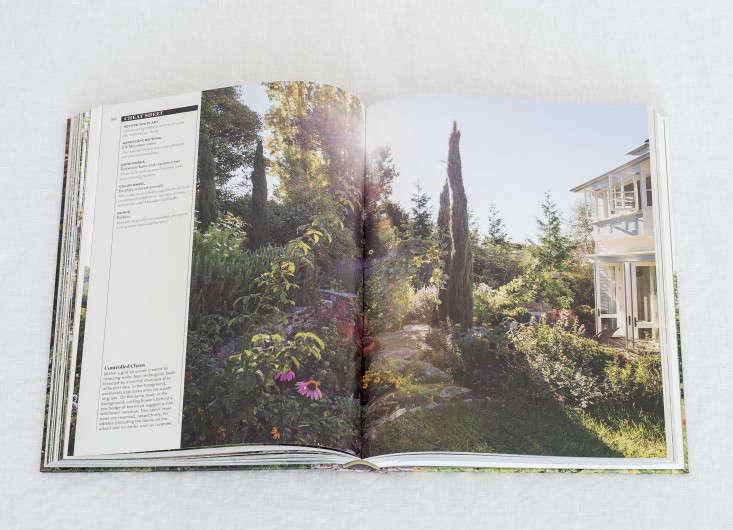 Gardenista_Book_Matthew_Williams_DSC_7202