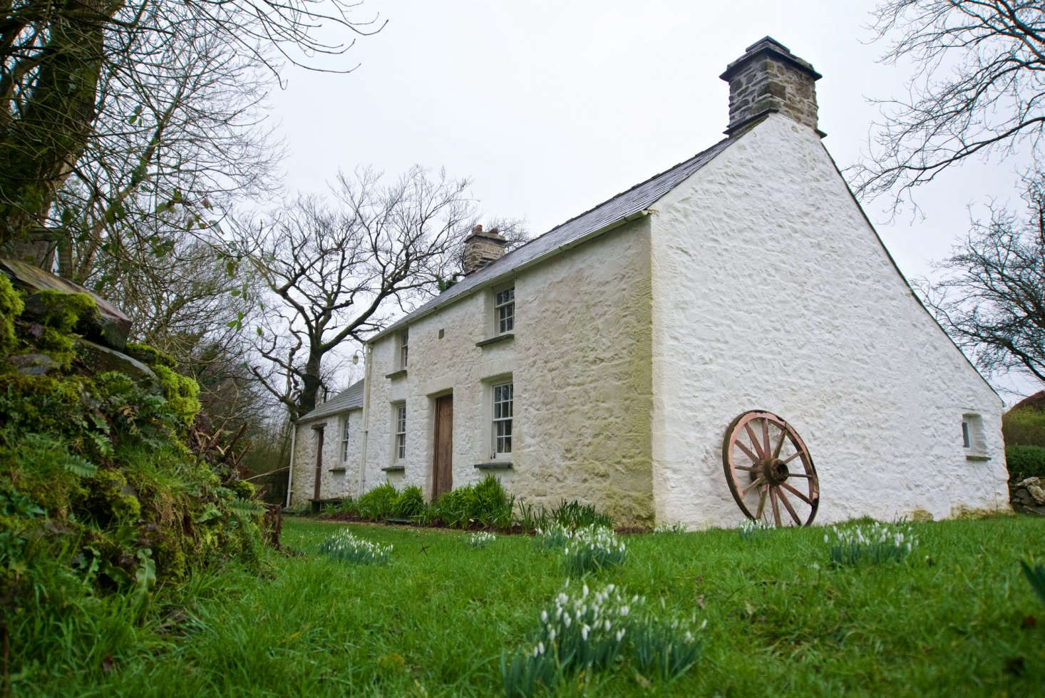 mid rhayader to with in view rental cottages hot friendly rent cottage wales tub pet woodland