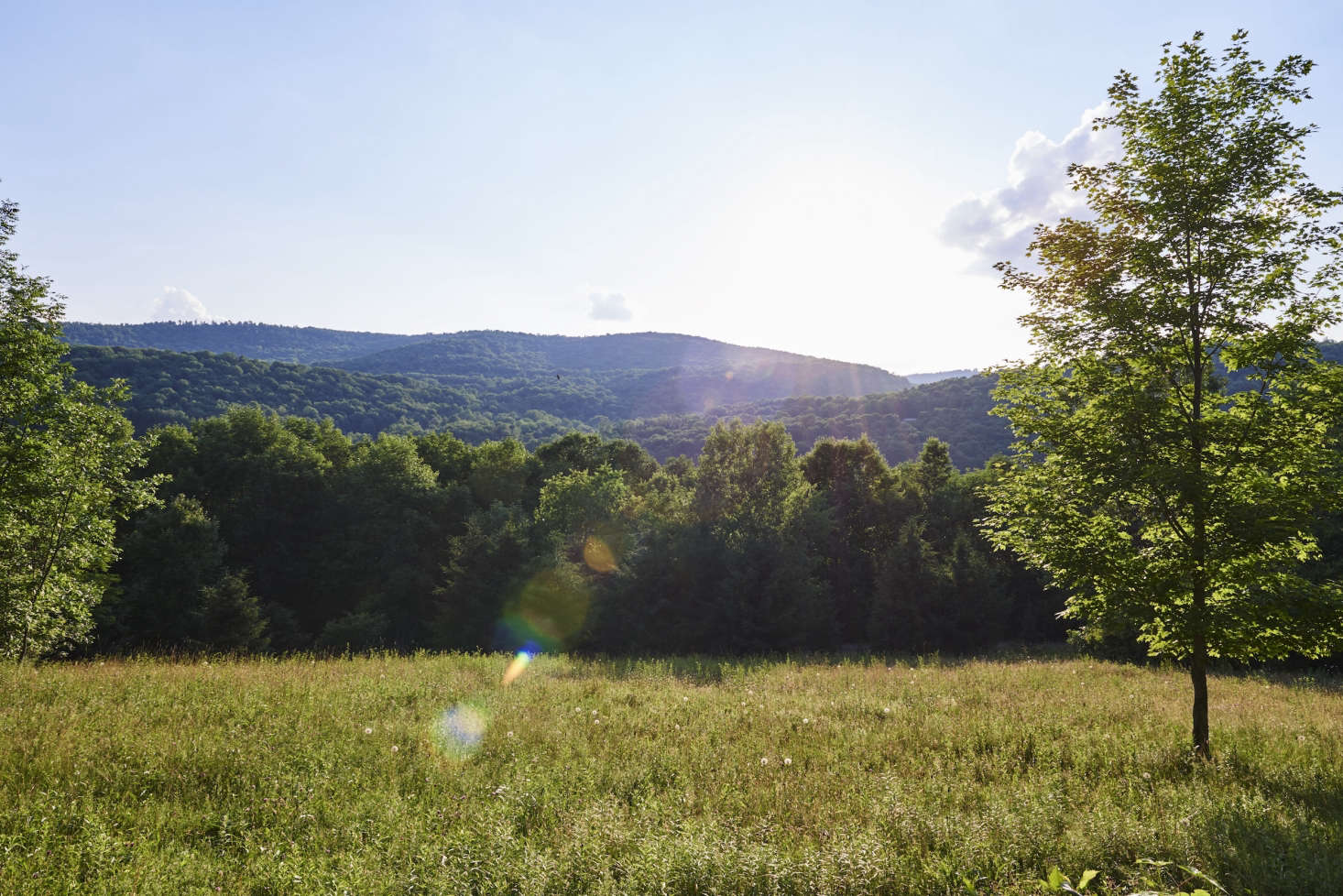 """Outside the front door: """"private rambling meadows,"""" plus a """"fire pit, open skies, stars, fireflies."""""""