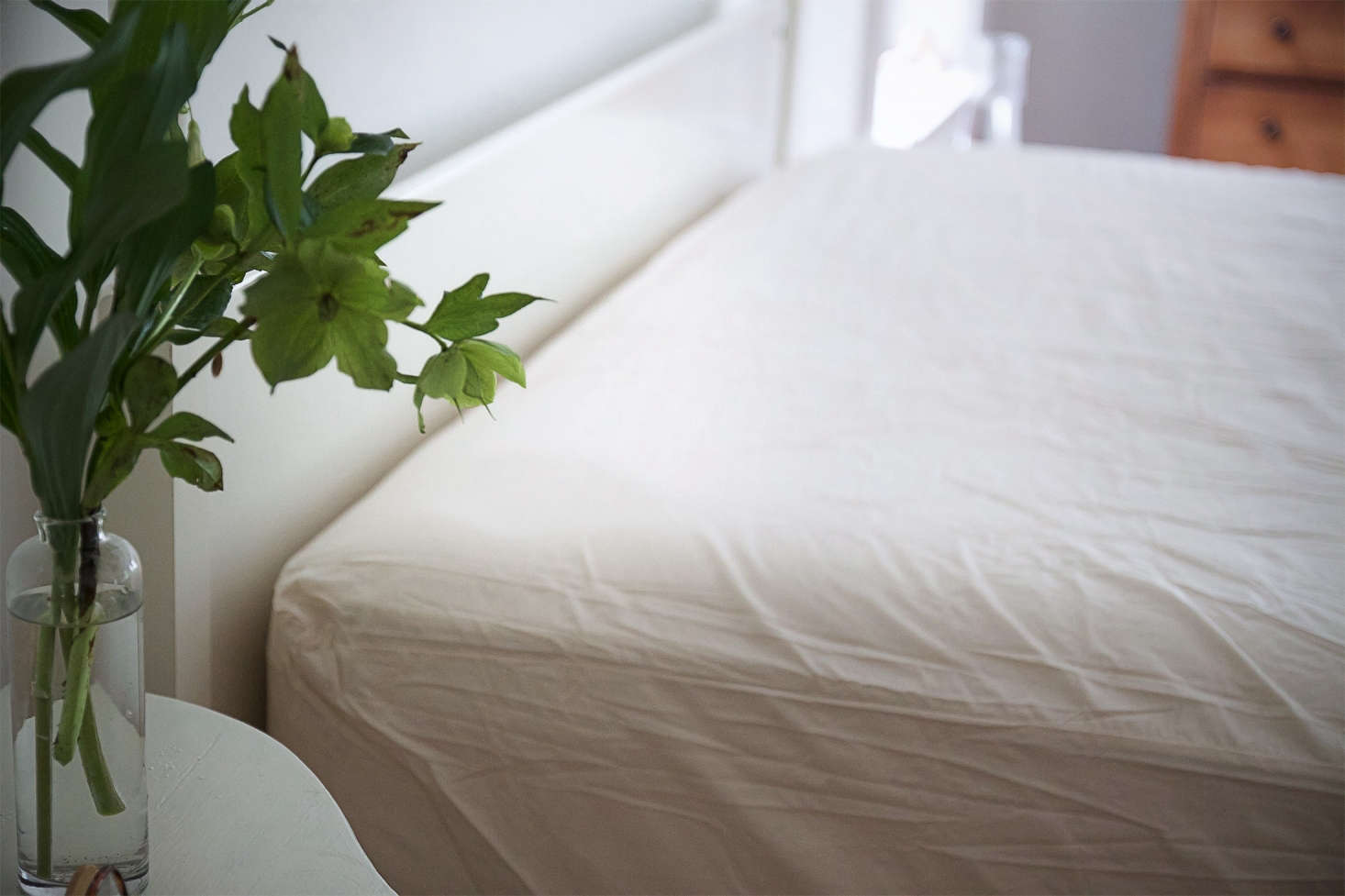 To protect my mattress, Ibought anAller-Ease Naturals Organic Cotton Allergy Protection Fitted Mattress Protector from Amazon; $56.