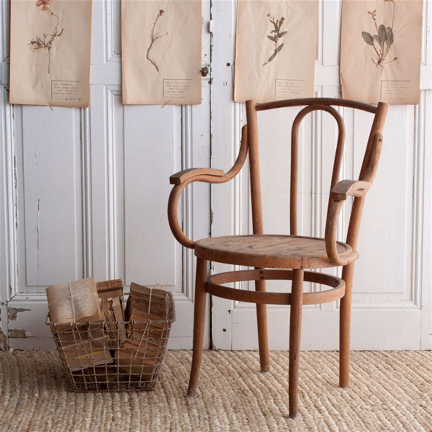Spotted on Elsie Green: charmingly faded pressed botanicals. See Current Obsessions: The Summer Cottage