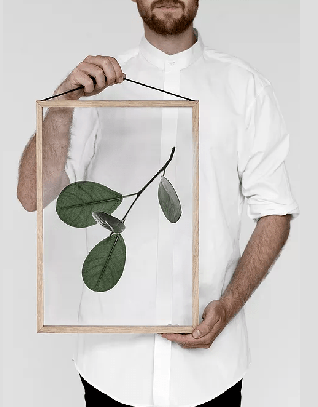 New from Moebein collaboration with Norm Architects and Paper Collective: Floating Leaves, a series of modern framed botanicals. (See also:Current Obsessions.)