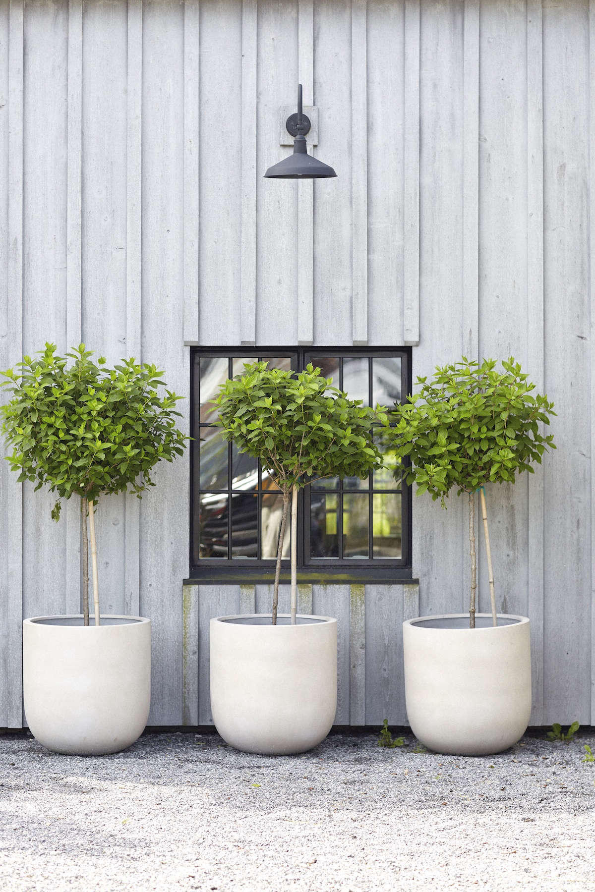 A row of simple oversized concrete planters in front of the shop.