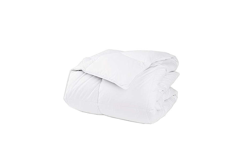 Best The Company Store LaCrosse Down Comforter