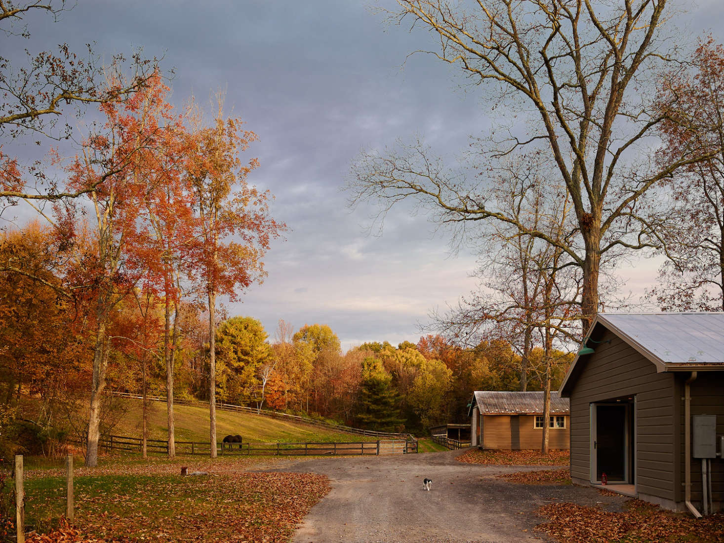 There are two barns on the property; the first barn is now the guesthouse with hay storage.