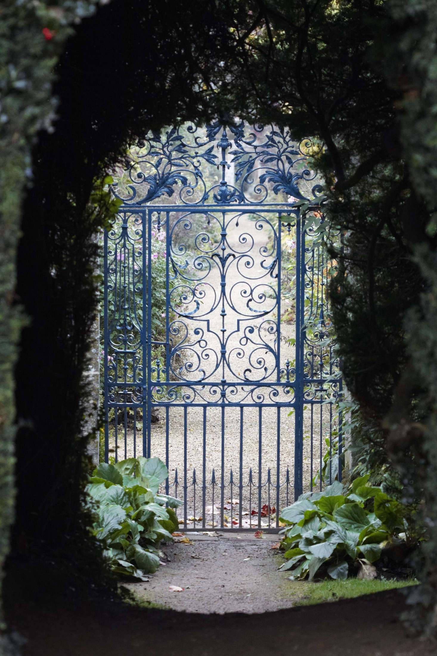 Trending on Gardenista: Beyond the Garden Gate - Remodelista