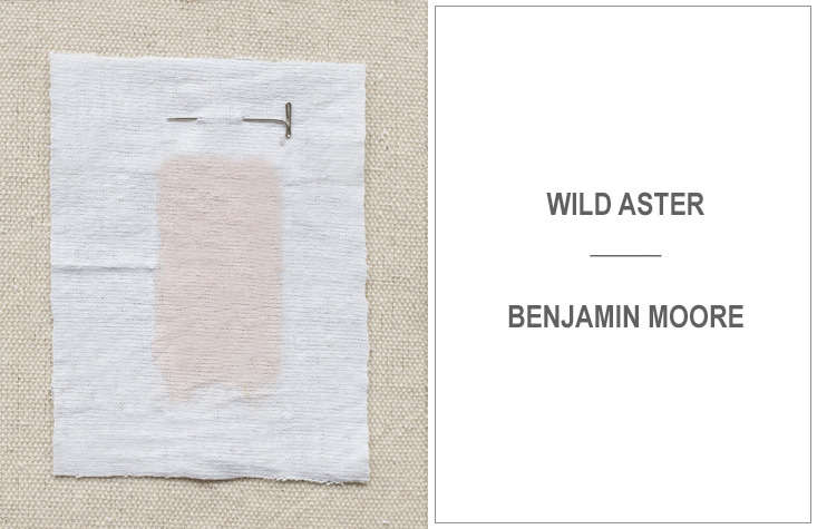 Ellen Hamilton of Hamilton Design Associates prefers Wild Aster from Benjamin Moore.