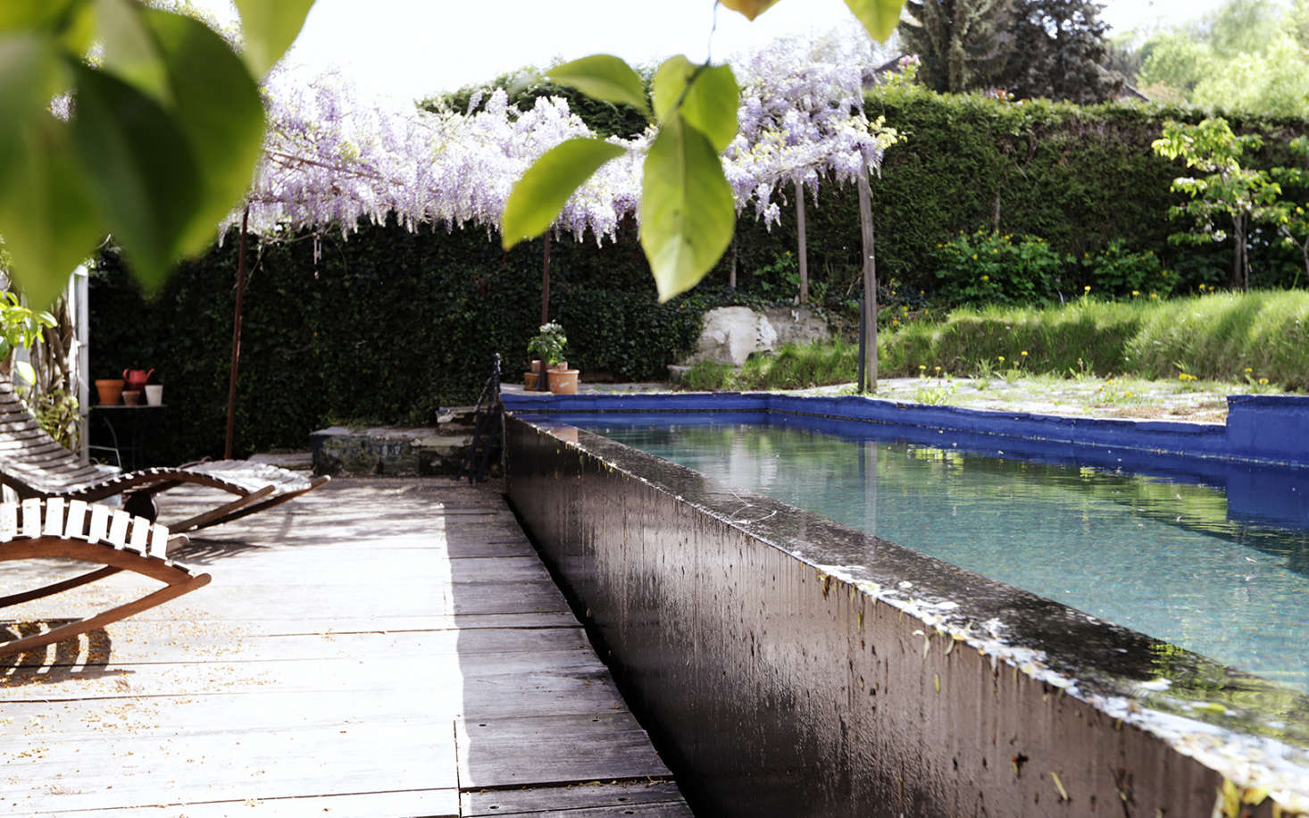 """The pool started as a small pond but ended up morphing into a lap pool. It's made of concrete that Valentin painted blue (""""I change it every year,"""" he says). The garden beyond was created in levels: a stone terrace and wood pergola, the pool, and the grass field beyond."""