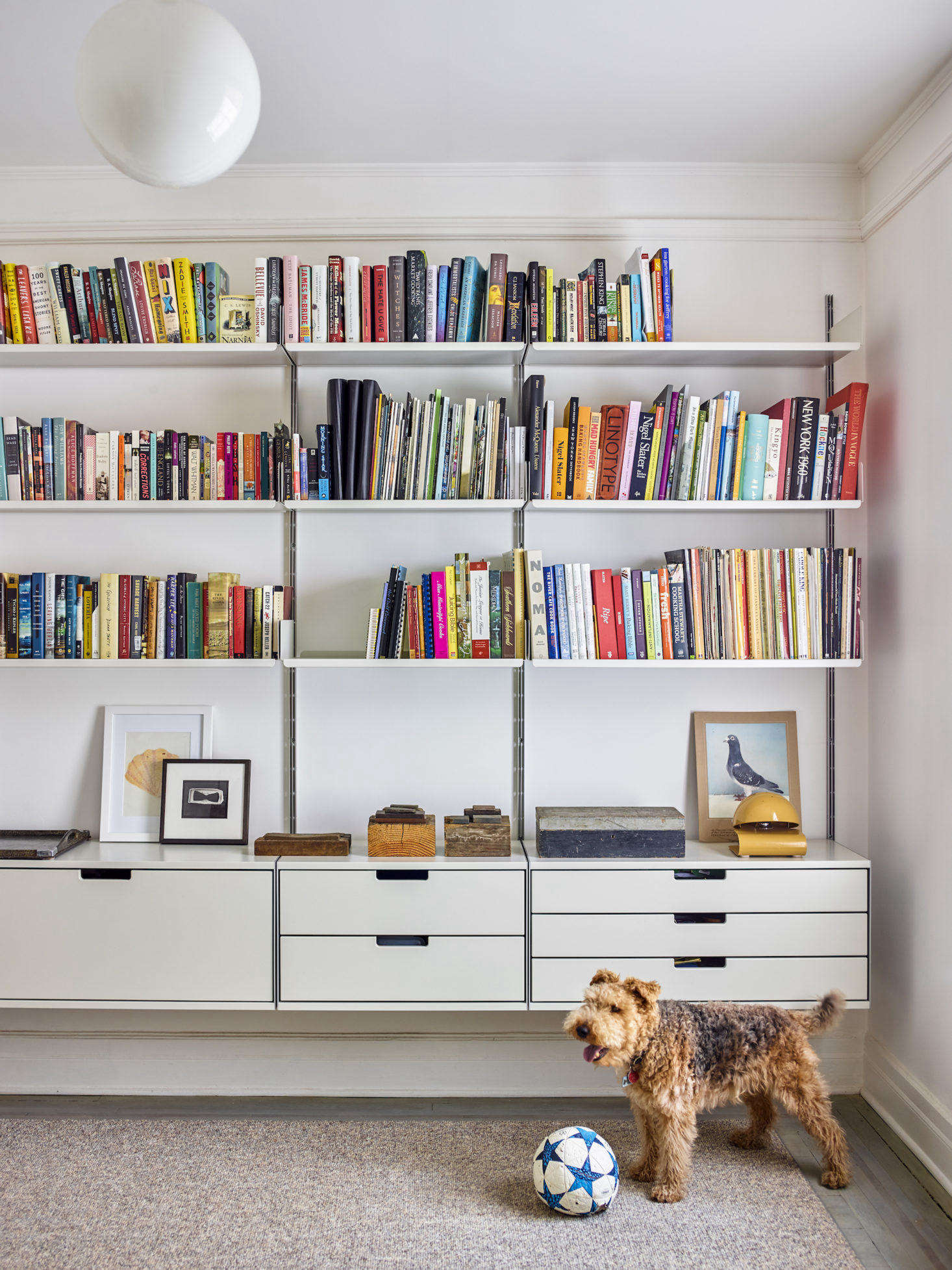 """""""Dogs need to feel at home, too,"""" writes Margot, who consulted. """""""