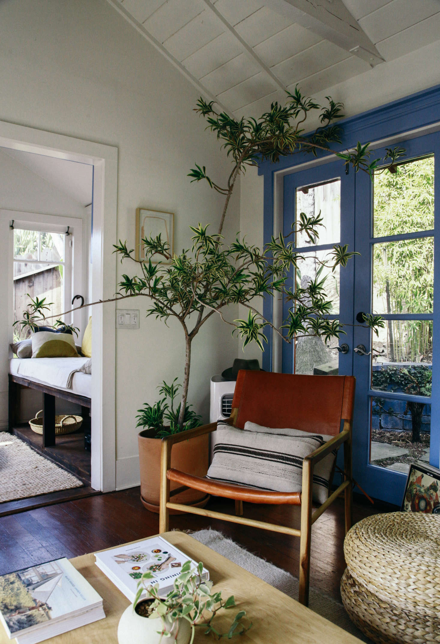 Every plant is unique, which makes them great for customizing a rental. Jodi and Alex placed plants of varying sizes and textures in ceramics pots throughout the house.