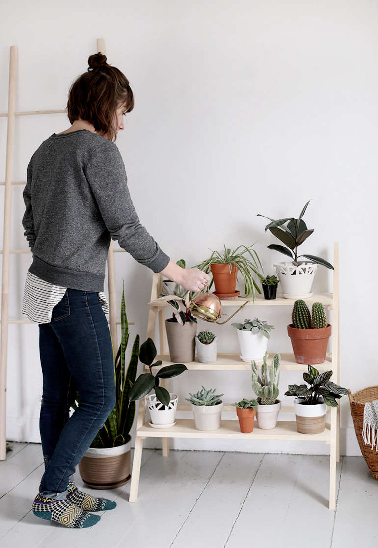 In response to Caitlin's growing indoor plant collection, a DIY Ladder Plant Stand.