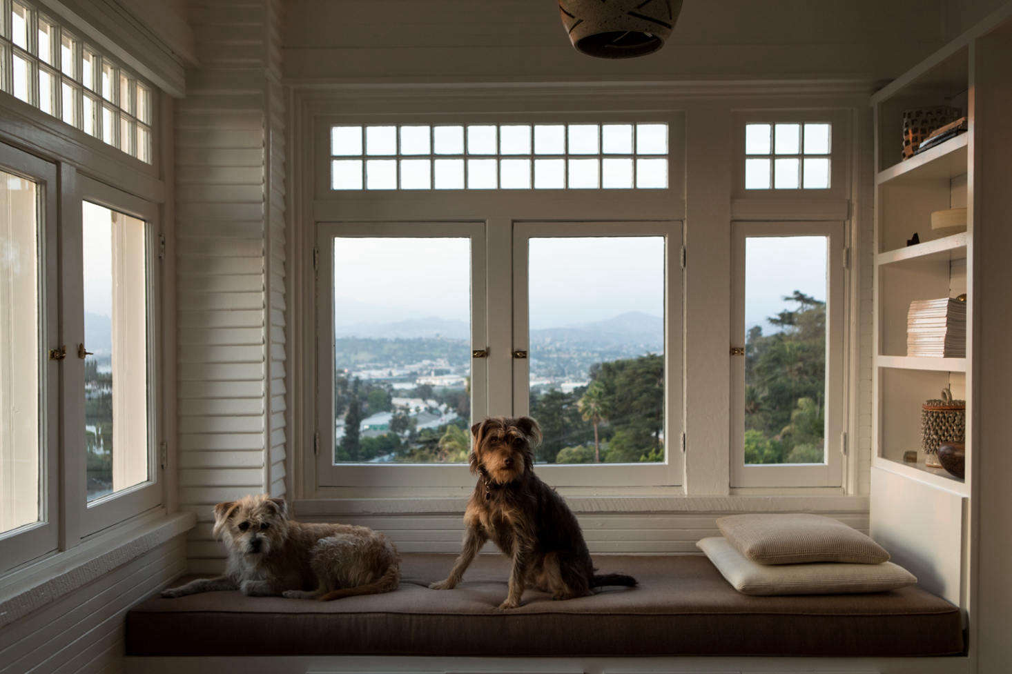 June and Fitz enjoying the daybed in the sunroom. All the leaded windows are original to the home. The ceramic pendant light is by Heather Levine.
