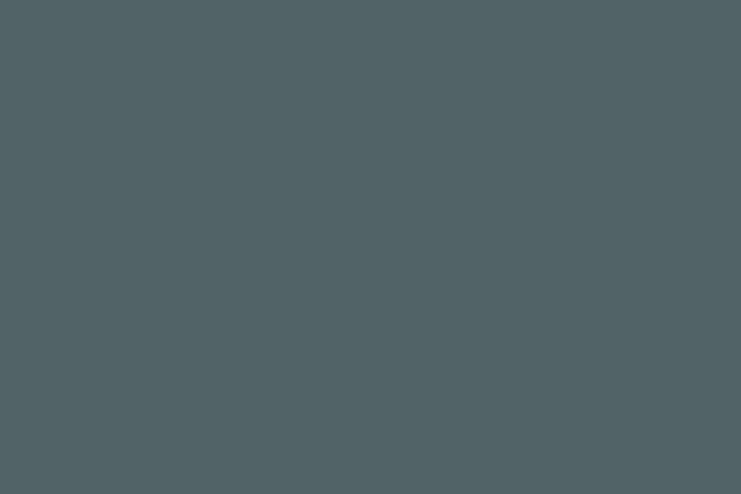 Chan e Eayrs são conhecidos por usar tinta de Farrow & Ball e Little Greene no Reino Unido.  Para um azul-esverdeado profundo semelhante à cor pintada no corrimão e no radiador aqui, consulte Farrow & Ball & # 8