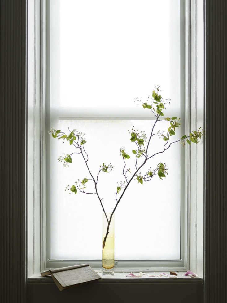 Window in Master Bedroom in Brooklyn Brownstone by Arthur's, Photo by James John Jetel