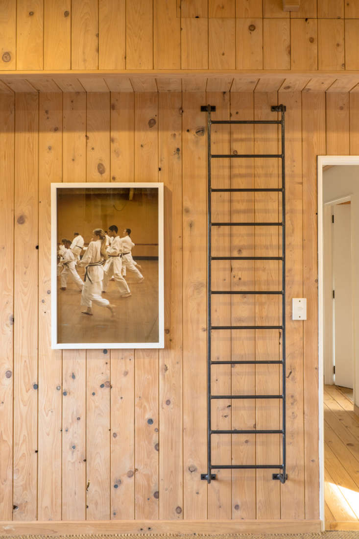 George and Willy urban cabin paneled bedroom with overhead storage ladder, NZ.