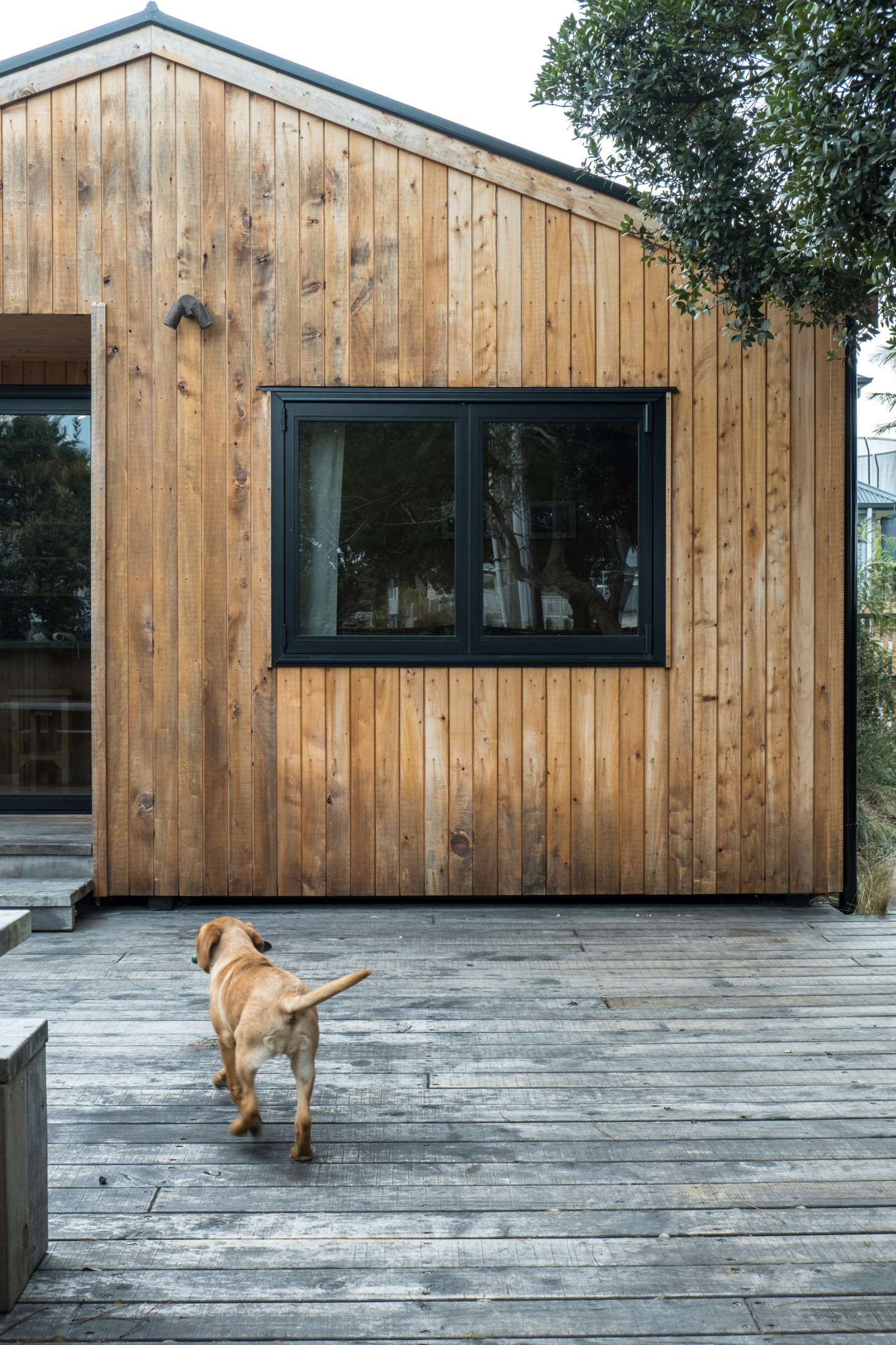 """The walkway leads to a wide front deck. Powder-coated black aluminum framing was introduced outside and in. To install the house's vertical shiplap, George and Will worked alongside their """"mate Pablo, who is a qualified builder."""""""
