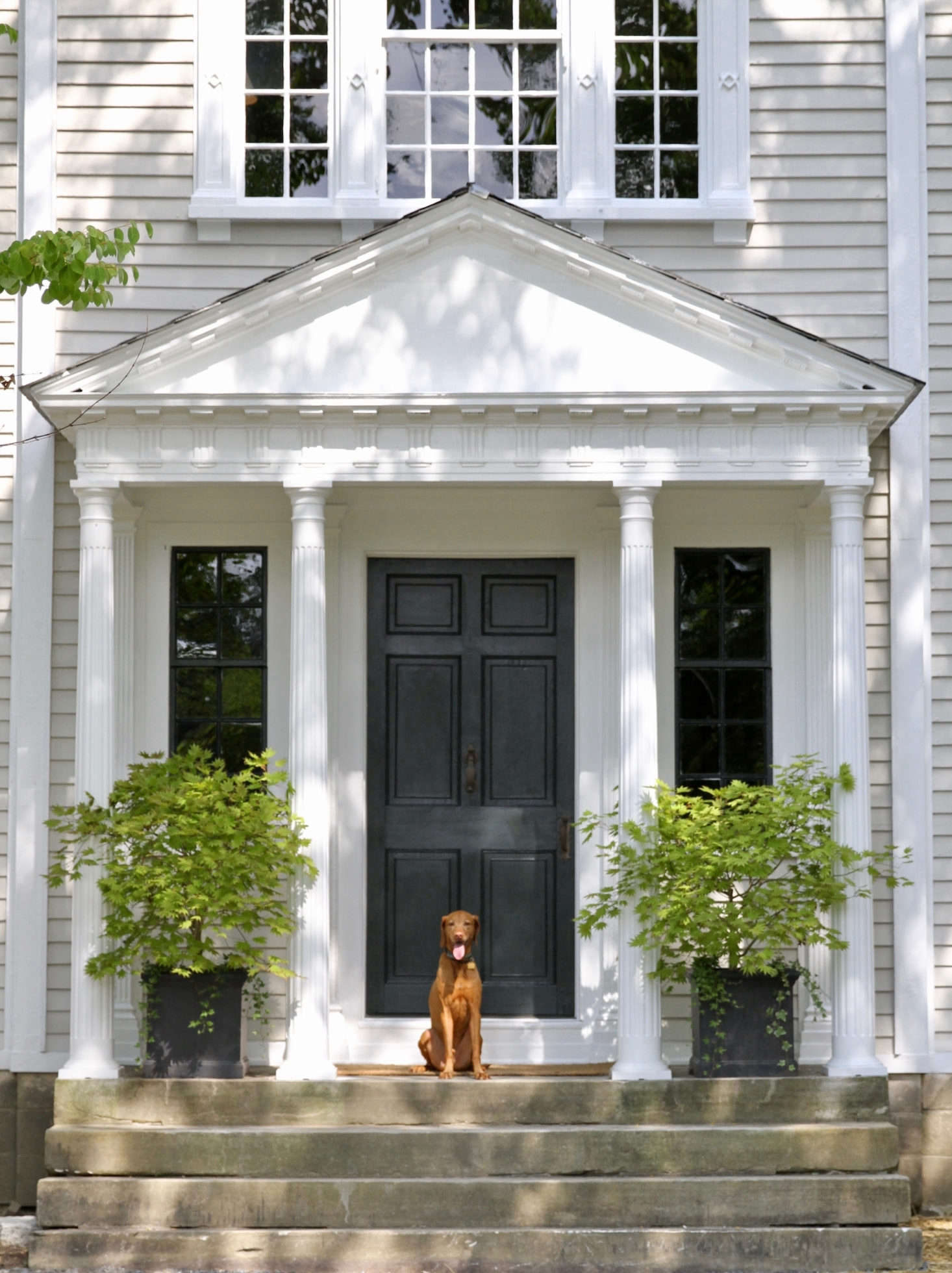 Dutch, Scott and Frank's photogenic dog, greets guests. The house, located in the village of Richmond in western Massachusetts, was at one point a summer arts school, hosting artists, musicians, and composers like Leonard Bernstein and Aaron Copland.