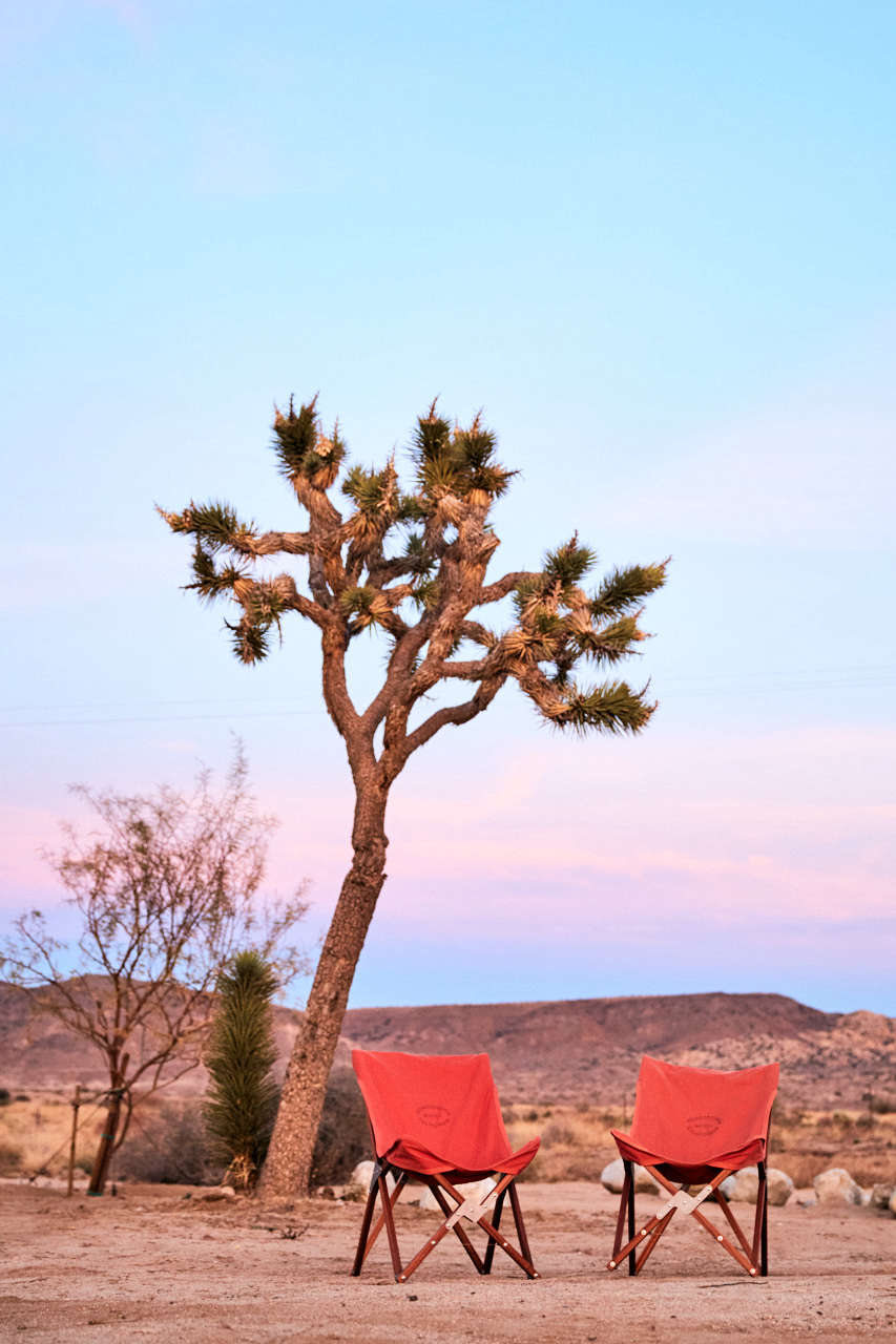 A Joshua tree overlooks camp chairs set out for sunset views.