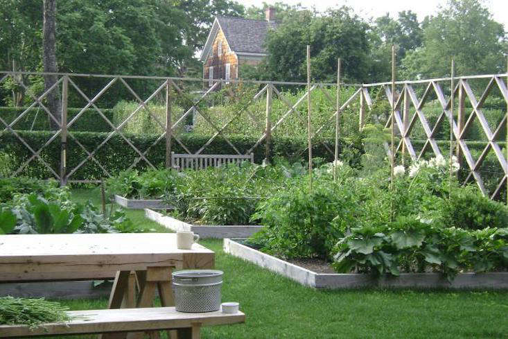 A glimpse of the elegant—and deer-proof—fencing that Lisa designed for the vegetable garden. Note the privet, trimmed to the exact middle of the diamond fencing.