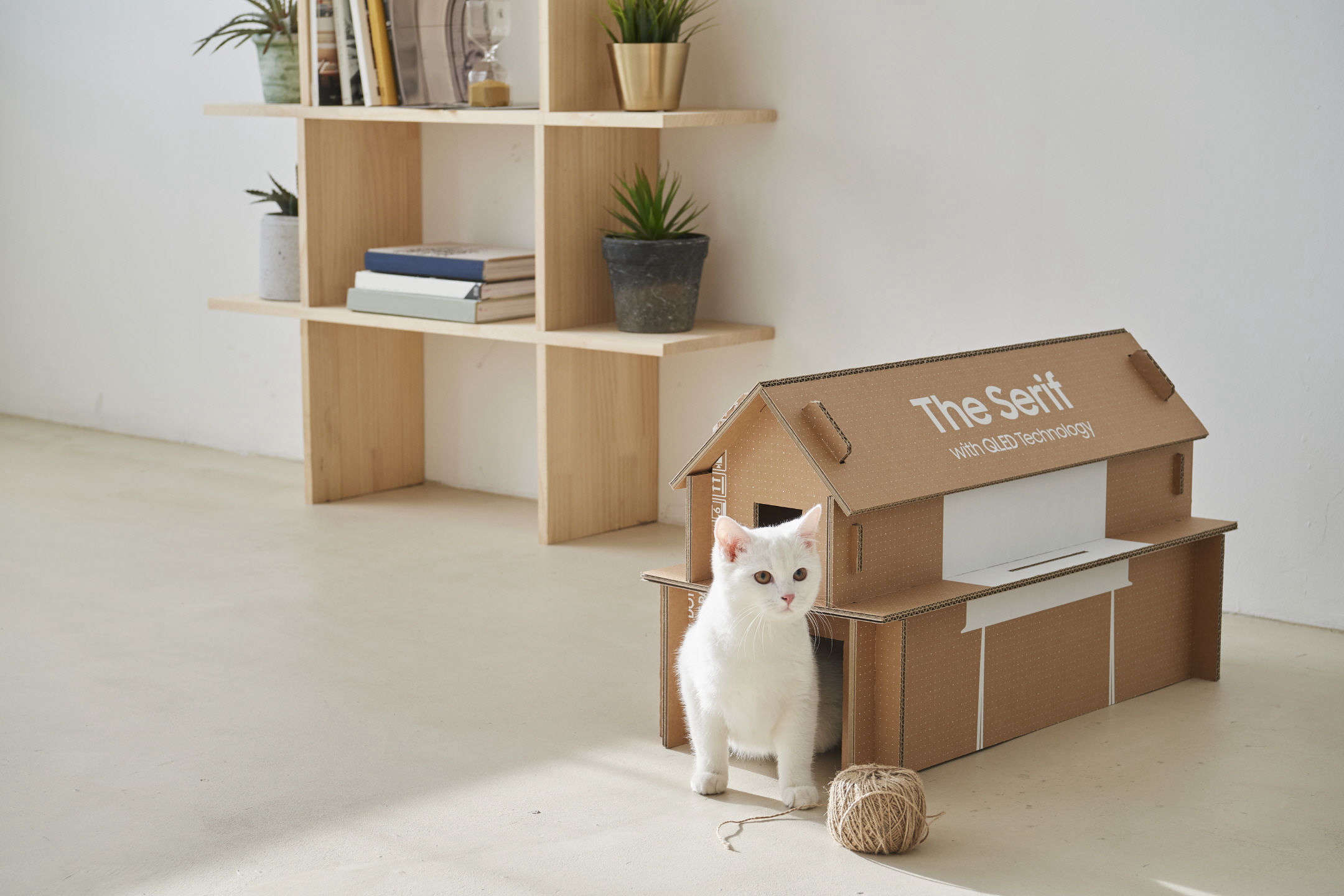 DIY cardboard furniture and accessories: shelves, a cat house, and more from Samsung's cardboard television boxes